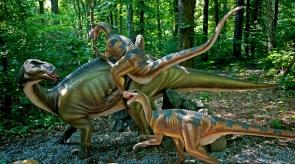Dinoprak w Malborku